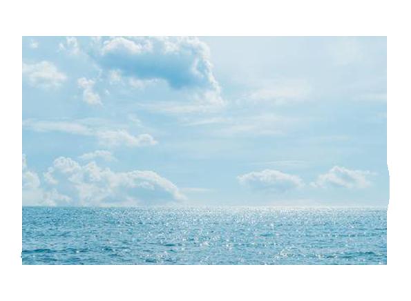 35 anni di esperienza - Ideamare